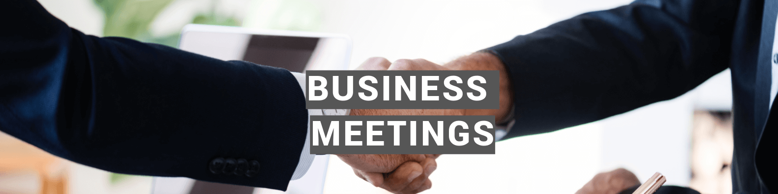 Chinese Interpreters for Business Meetings